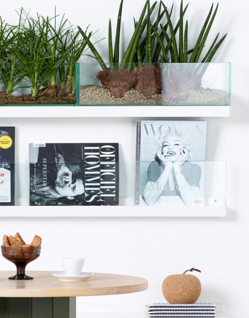 macetero vidrio colgante KA&S DIHWEB Tienda de decoración online. Productos de diseño y decoración, accesorios para el hogar, muebles de comedor y salón