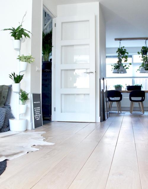 Macetero de riego automático Designers in-home. Muebles de diseño y decoración, accesorios para el hogar. Encuentra estilo en tu tienda de decoración