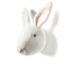WS 0012 Rabbit Alice R
